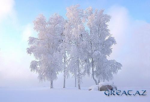 Красивые Зимние картинки ( 20 Фото