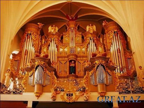 красивый женский орган на фото