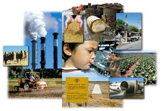 Факты о загрязнениях