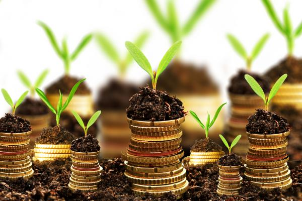 Приметы и советы для привлечения денег