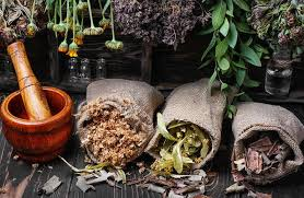 Магические травы: как применять их себе о благо